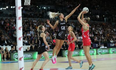 Netball Silver Fern England Roses