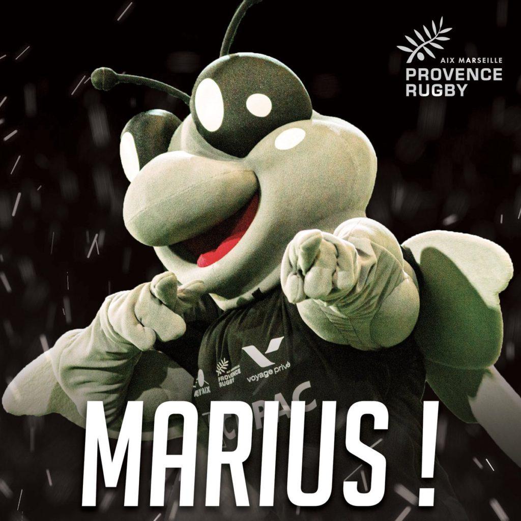 Marius, la mascotte de Provence Rugby