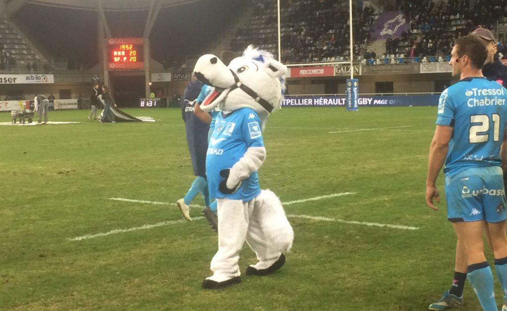 La mascotte accompagne les joueurs sur le terrain après le match